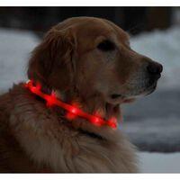 Licht LED-Leuchthalsband fr Hunde, 70 cm, universell krzbar - Rot