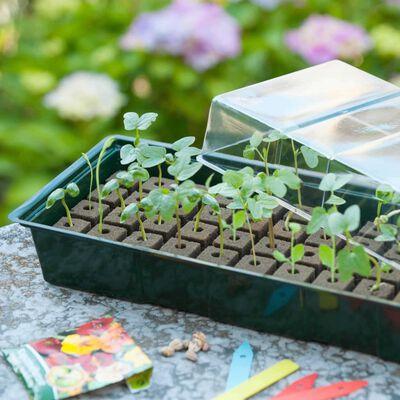 Nature Mini Gewächshaus Set 4x16 Zellen,