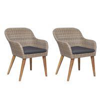 vidaXL Gartenstühle mit Polstern 2 Stk. Poly Rattan Braun