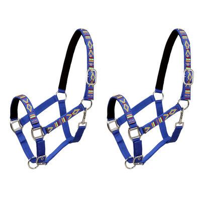 vidaXL Pferdehalfter 2 Stück Nylon Größe Warmblut Blau