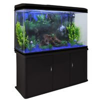 300L Aquarium mit schwarzem Schrank & blauem Kies 70cm x 120cm x 39cm