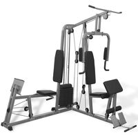 vidaXL Multifunktionale Fitnessstation 65 kg