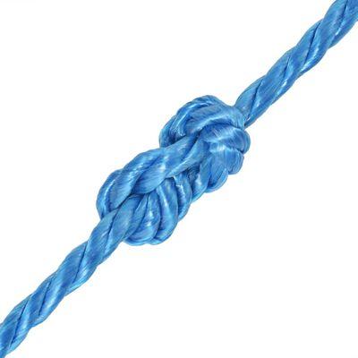 vidaXL Polypropylenseil 10 mm 100 m Blau