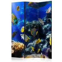 3-teiliges Paravent - Underwater adventure  - 135x172 cm