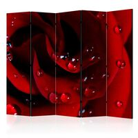 5-teiliges Paravent - Red rose with water drops II  - 225x172 cm