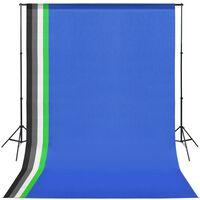 vidaXL Fotostudio-Set mit 5 farbigen Hintergründen und einstellbarer Aufhängung