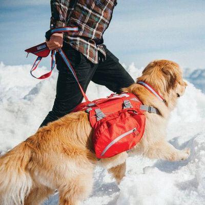 Kurgo Hunde-Rucksack Baxter L Rot